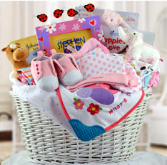 Precious Baby Girl Basket Includes Shipping